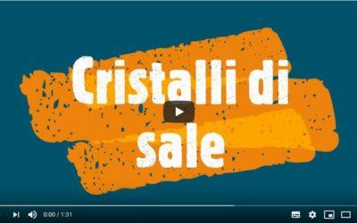 Video-relazione di scienze sui cristalli di sale